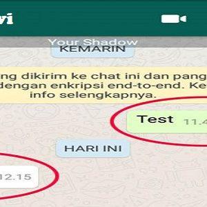 Cara Menambahkan Foto Profil Di Obrolan Chat WhatsApp,