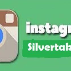 Cara Menggunakan Silvertakipci UntukMenambah Followers IG