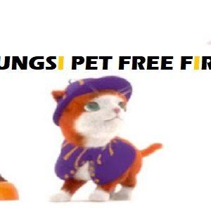 Inilah Fungsi Pet Di Free Fire