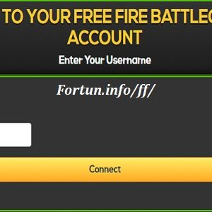 Fortun.info/ff/,